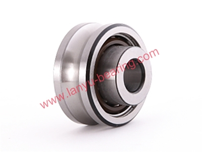 Rail Roller Double Row Angular Contact Ball Bearing (LFR Series)